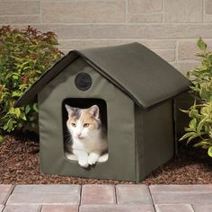 Heated cathouse! My cats are indoor, but would still love this in winter.