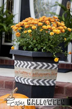 Blogger Jamie of Southern Revivals shows us just how easy Autumn decor can be!