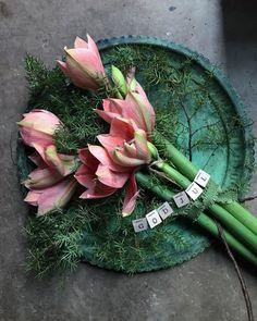 Välkommen till Gertruds rum! 🌿 (@gertrudsrum) • Instagram photos and videos Christmas Greenery, Rum, Succulents, Videos, Plants, Photos, Instagram, Pictures, Succulent Plants