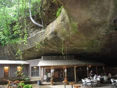 Rattlesnake Saloon- sporting a distinct setting under an ancient rock bluff, can't wait to go back :) Muscle Shoals AL