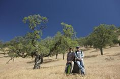 Evidence suggests California's drought is the worst in 1,200 years