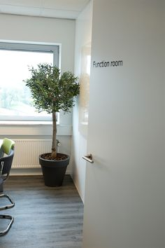 an artificial olive tree is placed at Relatics
