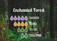 Essential Oils Guide, Essential Oil Scents, Essential Oil Diffuser Blends, Essential Oil Uses, Doterra Essential Oils, Jasmine Essential Oil, Essential Oil Combinations, Diffuser Recipes, Living Oils