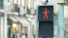 The Dancing Traffic Light by smart, youtube: Smart ideas can turn the city into a better place. Like a dancing traffic light that makes people wait and watch rather than walk through the red light. Thanks to @stevenm ! #Traffic_Light #Safety