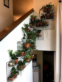 Grates for plants to hang Room With Plants, House Plants Decor, Plant Decor, Plant Rooms, Room Ideas Bedroom, Bedroom Decor, Nature Bedroom, Plant Shelves, Shelves With Plants