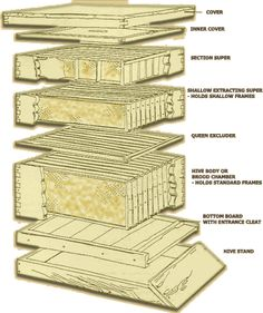 Types Of Modern Artificial Beehives (2)