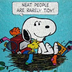 Neat People are Rarely Tidy!!