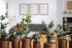 A Cheap DIY Centerpiece for Fall: Twine-Wrapped Jar Vases | The Kitchn