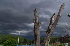 Clouds in Tineretului Park by Ileana Goanta on Places To Visit, Clouds, Explore, Park, Plants, Parks, Plant, Planets, Cloud
