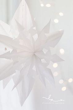Weihnachtszeit, DIY, Papiersterne aus Butterbrotbeuteln, Rosenresli, Lillemor Fotografie Bietigheim-Bissingen