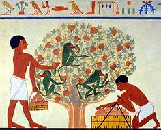 goats in ancient egypt - Google Search