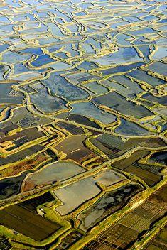 Les marais salants de Guérande, Loire-Atlantique Brittany by frederic., via Flickr