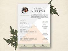 resume template modern resume template professional by focvs - Template Resume Word