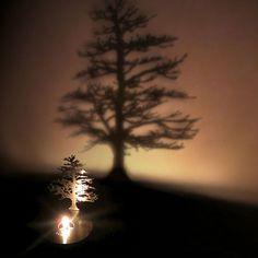 Lumen Light - Givetu