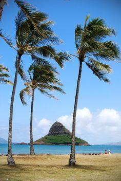 Hawaii - Mokoli'i island (Chinaman's Hat) off the windward coast of Oahu, near Kualoa Beach Park.