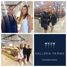 Diana Restrepo: Visited Galleria Farms with Ana C. Martinez, hosted by Yolanda Valencia. Not only do they have an amazing operation in the fresh flower industry and leading business acumen, but are also philanthropic with their contributions to the Miami Dade College foundation. As a proud recipient of the 2017 Galleria Farms Scholarship, they have funded one year of my education, allowing me to continue pursuing a Baccalaureate degree in Supply Chain Management. I am humbled and extremely…