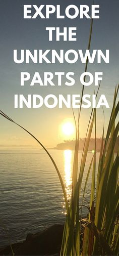 There is so much more to Indonesia than Bali.  Why not look a little further afield when planning your next trip here.  The beauty is endless.