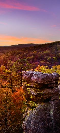 Autumn dusk in the Ozark National Forest of Arkansas • photo: Gale Rainwater