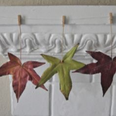 Autumn decoration idea for the wooden beam in our bedroom