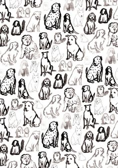 Dog illustration line drawing, illustrated dog pattern, editorial illustration dogs Dog Pattern, Pattern Art, Print Patterns, Pattern Painting, Mans Best Friend, Best Friends, Conversational Prints, Dog Wallpaper, Pattern Illustration
