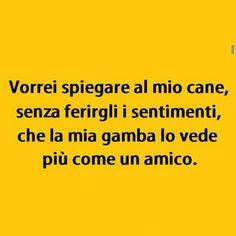 151 Best Italian Images Humor Funny Italian Humor