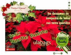 Ten una Noche Buena y una muy Feliz Navidad llenas de amor y felicidad en compañía de toda tu familia y amigos, les deseamos sus amigos de ulabags.com.mx
