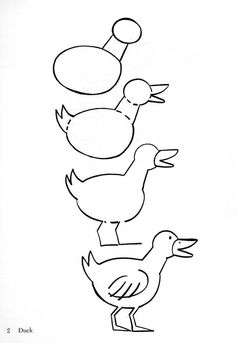 dessiner un canard 1605   32 comment dessiner