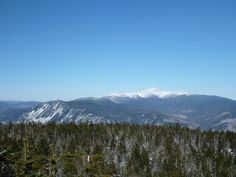 Mount Washington and Webster Cliffs from the fine opening on Mt Nancy.