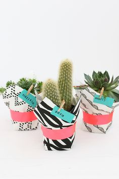 WE ♥ THIS!  ----------------------------- Original Pin Caption: DIY Fabric Wrapped Succulent | alice & lois