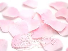 200 Wedding Silk Rose Petals Double Pink 2 inch Wide * Discover this special deal, click the image : Artificial Plants Decor