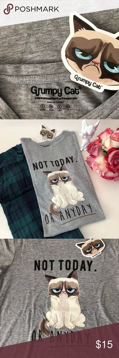 🎁🌷Holiday Sale 🌷🎁 cute Grumpy Cat tea shirt 🎁🌷Bundle & Save🌷🎁 original price €16. The cutest Grumpy cat tea shirt. Bought from Europe. Brand new with tag. Size is 8 U.k. 36 EUR. 4 U.S. fabric made in Turkey. 65% Polyester, 35% Viscose. Super soft. It could be bundled with a pair of P. J. For only $12. More, If you wish😊 same day shipping. ⛔️Trade. Smoke and pet free environment. Tops Tees - Short Sleeve
