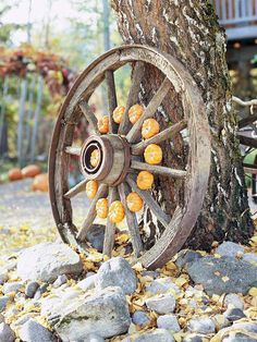 Mini pumpkins tucked into the spokes of an old wagon wheel