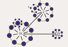 Netwerken | Werkxyz