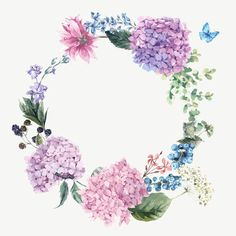 цветы, гортензии