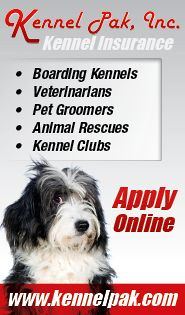 A sporty and cute trim on the Shih Tzu can take a variety of forms. Grooming Shop, Dog Grooming Tips, Shih Tzus, Long Legs, Puppies, Dogs, Cubs, Pet Dogs, Doggies