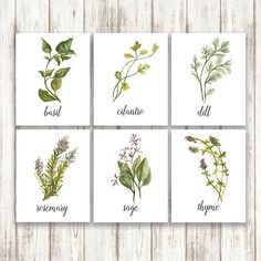 Watercolor+Herbs+on+Printable+Set+by+WildGardenPrintables+on+Etsy