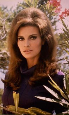 Raquel Welch Classic Actresses, Beautiful Actresses, Timeless Beauty, Classic Beauty, Vintage Hollywood, Classic Hollywood, Illinois, Celebrity Babies, Big Hair