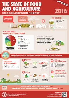 The State of Food and Agriculture: Mitigation