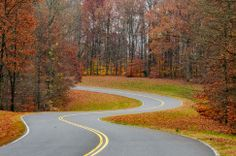 Title: Milepost 432 Photographer: Tuck Choong, Tang Date Photo Taken: November 2013 Date Photo, Natchez Trace, Autumn, Fall, Photo Contest, Tennessee, November, Country Roads, Naturaleza