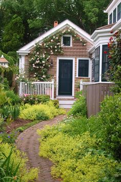 Nantucket, MA.  I like the use of Lady's Mantle (Alchemilla) along the path.