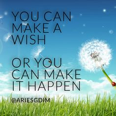 You can make a wish... or you can make it happen