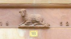 Mouton. Strasbourg