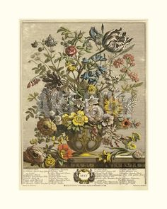 May Giclee Print by Robert Furber at Art.com