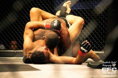 Diary of a Female Fighter: EFC 35 Results and Review