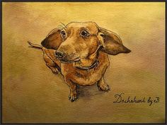 Dachsund Canvas Print featuring the painting Dachshund by Juan Bosco