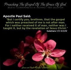 """Apostle Paul said: """"But I certify you, brethren, that the gospel which was preached of me is not after man. For I neither received it of man, neither was I taught it, but by the revelation of Jesus Christ."""" Galatians 1:11-12 KJV ✞Grace and peace in Christ! Faith Is The Substance, Now Faith Is, Christian Wallpaper, Bible Scriptures, Romans, Jesus Christ, Charts, Amen, Catholic"""
