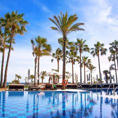You will want to take Marbella scent with you #marbs #marbella #marbslife #AmareMarbella #costadelsol #marbellahotel #hotelife #hoteldeluxe #amarepool #palmtrees #blue