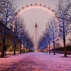 CHIC CITY | london eye | incredible | winter | colors