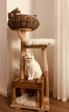Cat Tree House, Diy Cat Tree, Cool Cat Trees, Gatos Cats, Photo Chat, Cat Room, Cat Condo, Wood Tree, Wooden Cat Tree