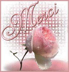 Gifs messages Fleurs Page 12 Merci Gif, Gif Rose, Jolie Images, Beau Gif, Good Morning Roses, Thank You Wishes, Happy Friendship Day, Beautiful Roses, In My Feelings